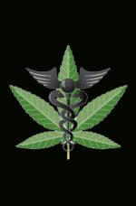 Cannabis light, Prodotti con CBD